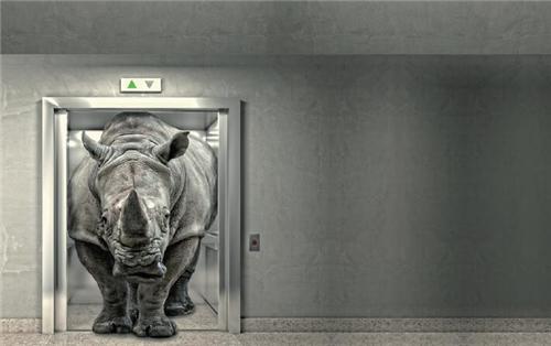 警惕房地产金融演变成灰犀牛