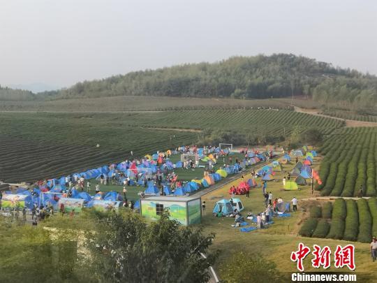 湖北赤壁万亩茶园举办首届湘鄂帐篷节 湖北省文旅厅供图